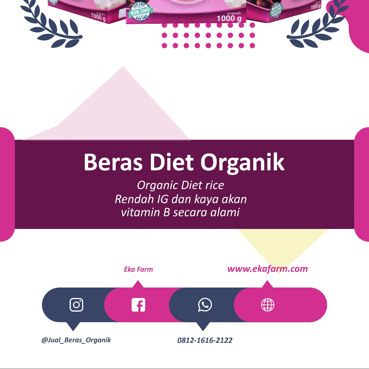 Ingin Diet Namun Tetap Makan Nasi- Grosir Beras Organik