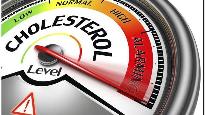 Turunkan Kolesterol dengan Minyak Herco