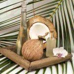 Khasiat Virgin Coconut Oil Untuk Kesehatan